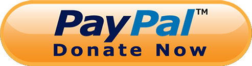 PayPal Donate Now logo